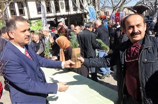Bursa'da 30 bin ücretsiz fidan dağıtıldı