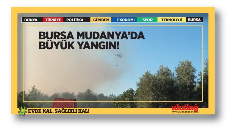 Bursa Mudanya'da büyük yangın!