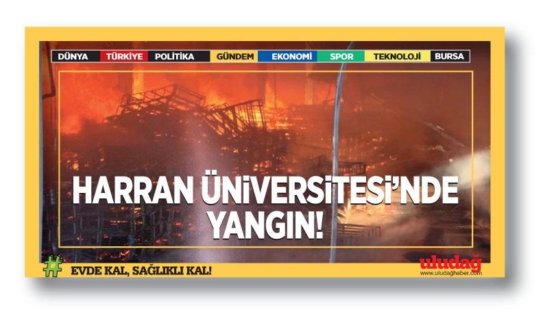 Harran Üniversitesi'nde yangın