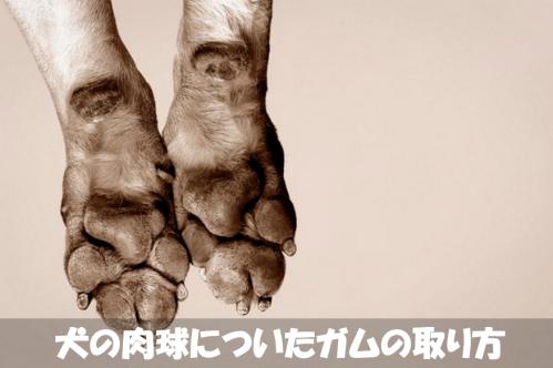2016-09-04_150303