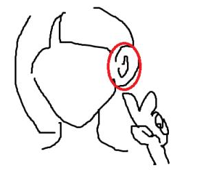 頭皮マッサージ耳たぶ
