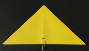 hoshi1.origami.5
