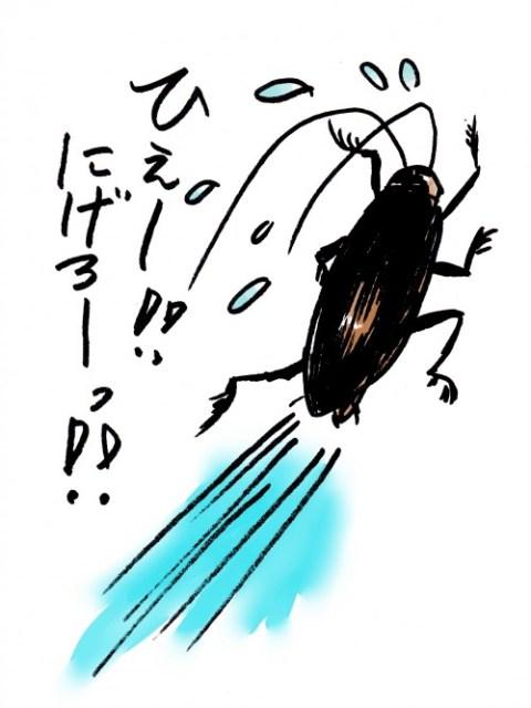 ゴキブリ根絶