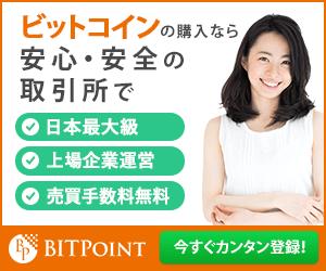 bit_point_300x250