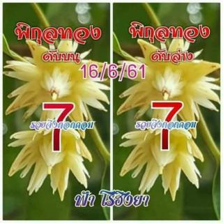 เลขดับพิกุลทอง 16/6/61, เลขดับพิกุลทอง 16-6-61, เลขดับพิกุลทอง 16 มิ.ย. 61, เลขดับ, เลขดับพิกุลทอง