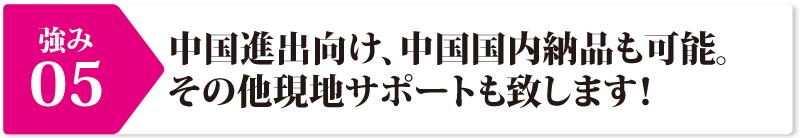 着ぐるみ本舗の強み⑤:中国進出向け、中国国内納品も可能。その他現地サポートも致します!