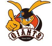 プロ野球 チーム名 由来 変遷 名前 意味