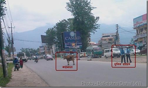 Sukedhara_KNP_traffic_Police_damn_care