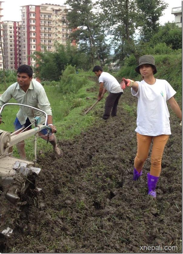 binita baral supervising land preparation