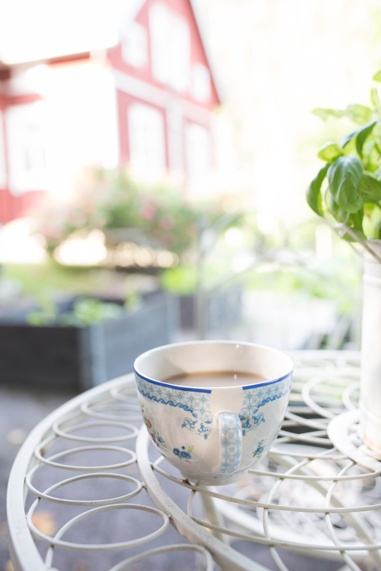 morning tea (1 of 1)