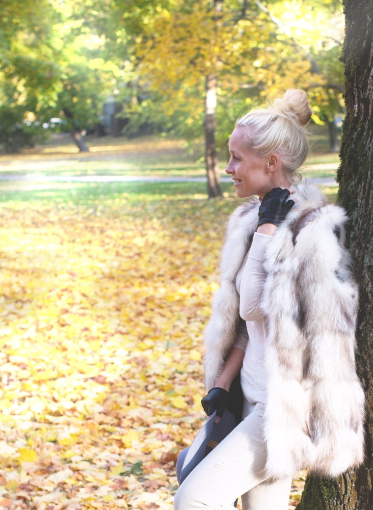 fur-fall2-1-of-1