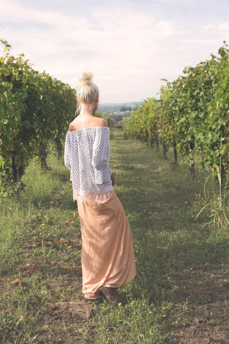 grapes-piemonte3-1-of-1