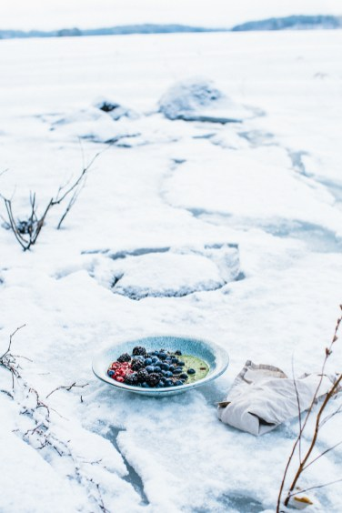arctic style smoothie2 (1 of 1)