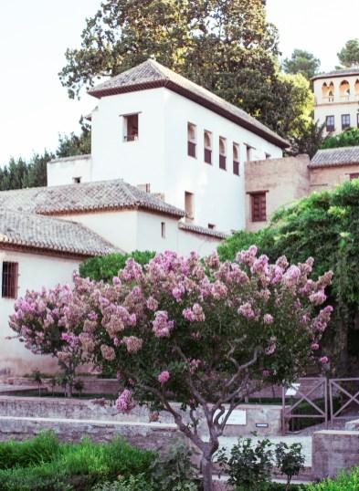alhambra granada17 (1 of 1)