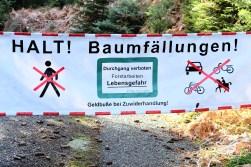 ...bei Hinterlangenbach