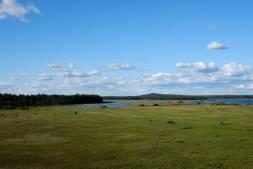 Store-Mosse Nationalpark - Aussichtsturm am Besucherzentrum. Mittig vor dem Wasser sind ganz klein Kraniche zu sehen und verdeutlichen die Weite (Bild in Originalgröße klicken)