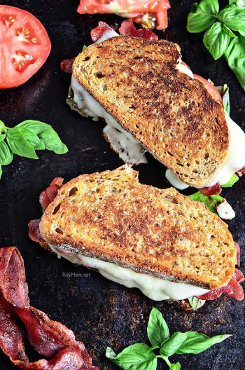 Turkey Bacon and Avocado Grilled Cheese sandwich loaded with fresh basil, tomatoes and mozzarella cheese on a hearty artisan bread. Recipe at TidyMom.net | Gourmet Grilled Cheese Recipes