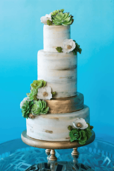Eco Eccentric Industrial Cake with Sugar Succulents