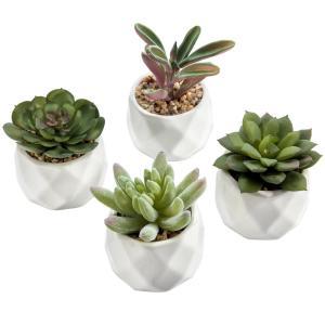Mini Artificial Succulent Plants in Geometric Planter Pots