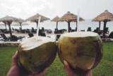 Our Coconuts from the Coconut man
