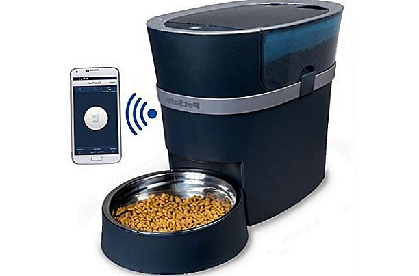Automatic Cat Feeders