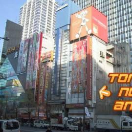 Akihabara Stores: Tora no Ana