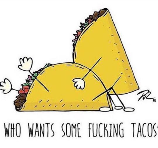 1fb7444dbb5444accb3e85e31b340599--taco-meme-taco-humor.jpg