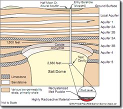 Cross_section_of_Salmon_Site.png