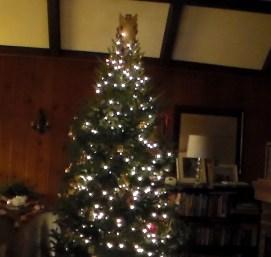 20161223xd_xmas_tree-10