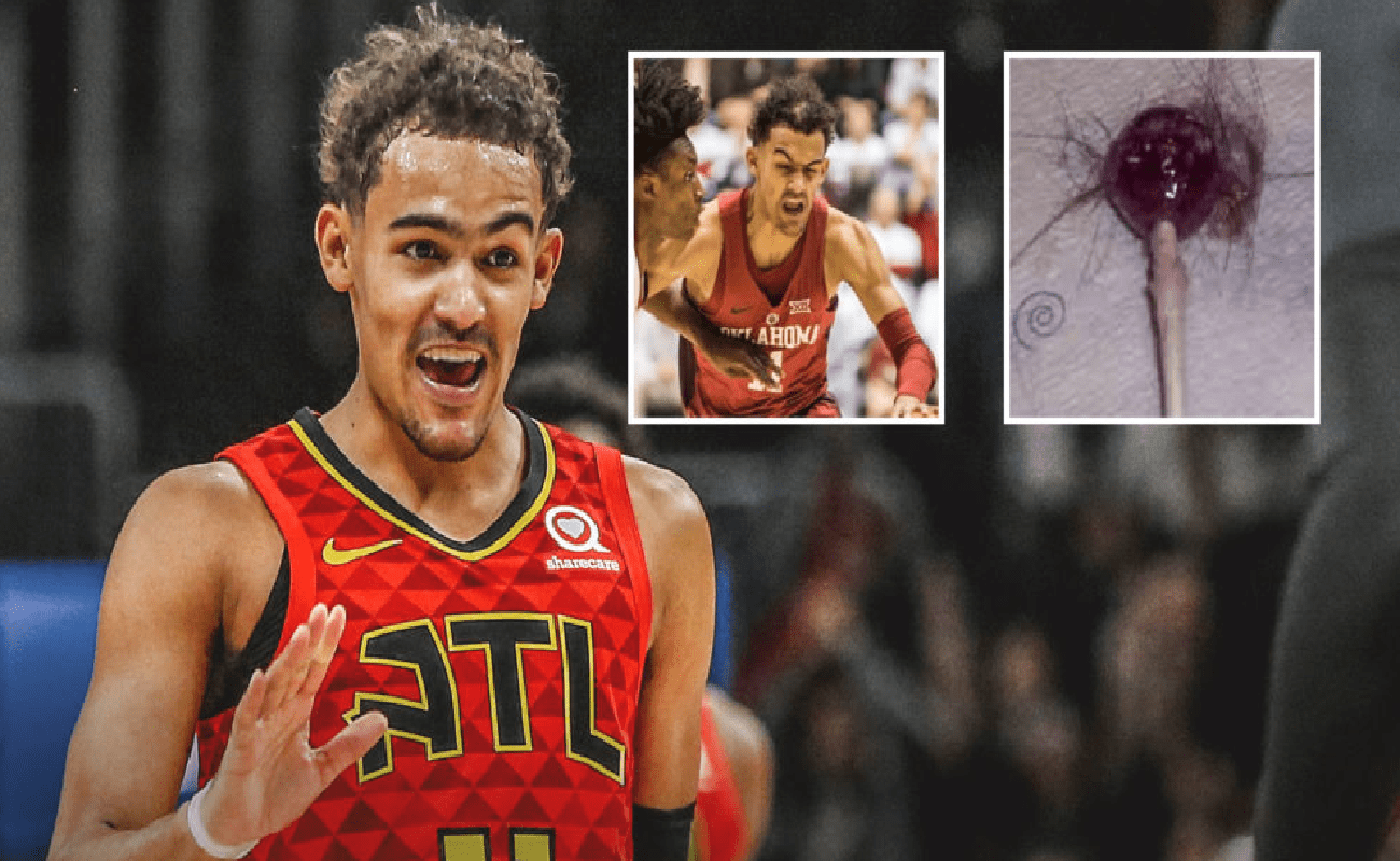 Trae Young Meme