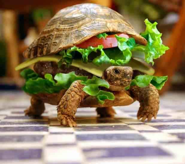 turtleburger