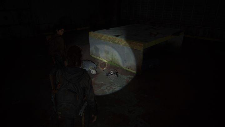 The Last of Us™ Part II_20200605225015