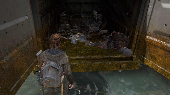 The Last of Us™ Part II_20200607221338