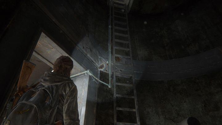 The Last of Us™ Part II_20200605210628