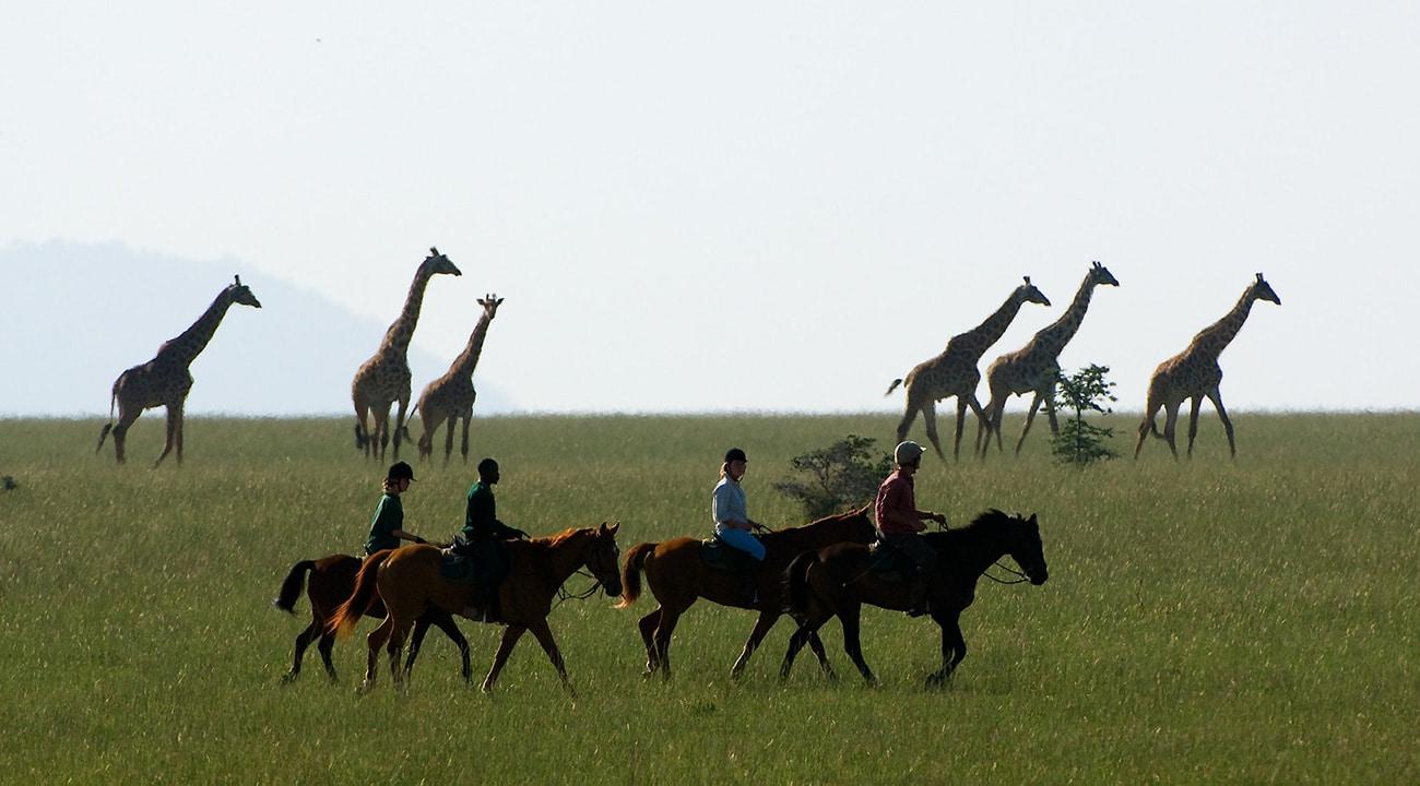 Family Safari To Kenya