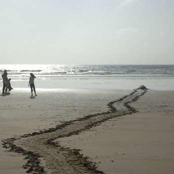 African Sandy Beaches