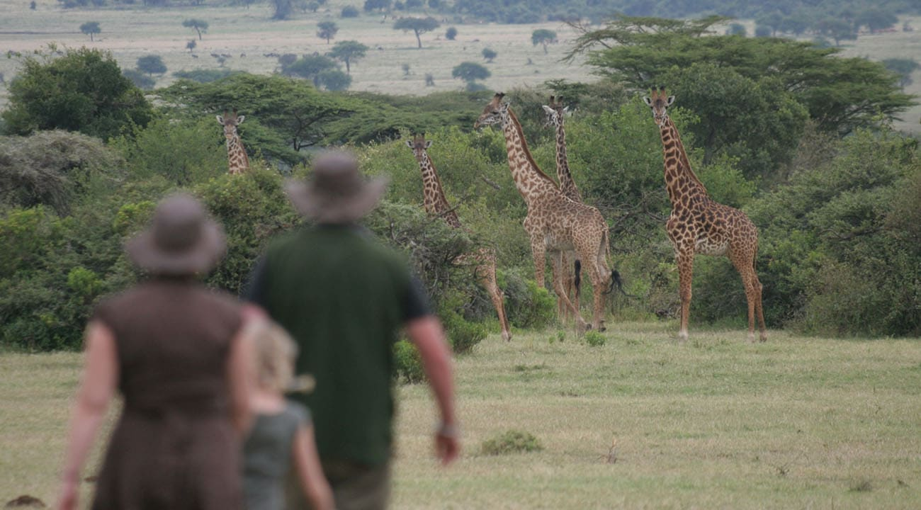African Family Safaris