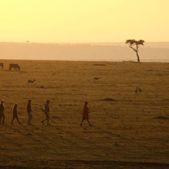 Sunsets Views In Africa
