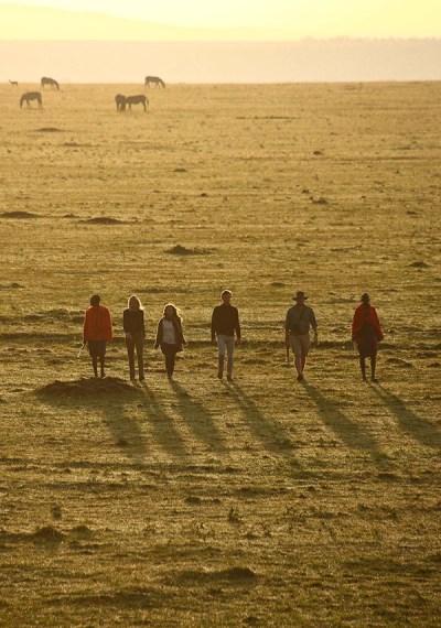 African Game Walks Safari