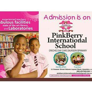 PinkBerry International School