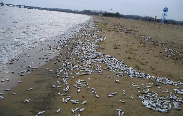 北美传来噩耗,猎鹰9号运载火箭顺利升空,卫星入轨第一火箭回收不知所踪