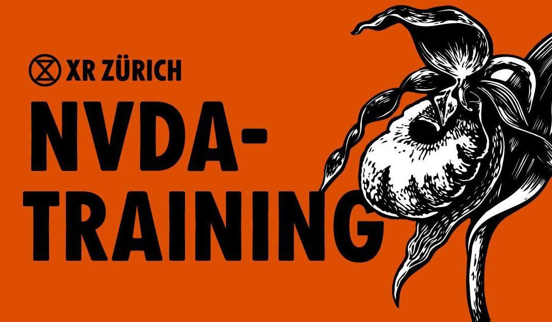 NVDA Training