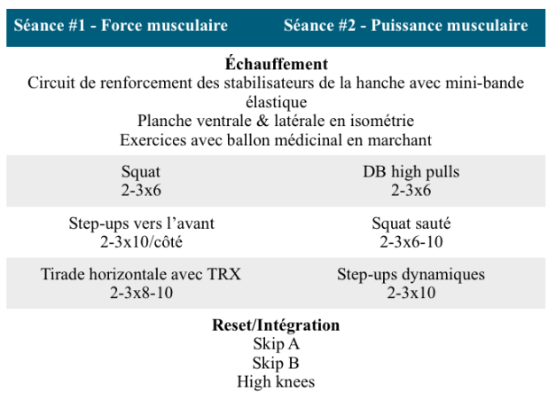 Exemple de séances en musculation