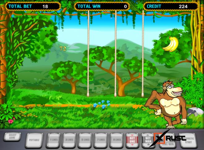 Веселые обезьянки в игровом автомате Crazy Monkey