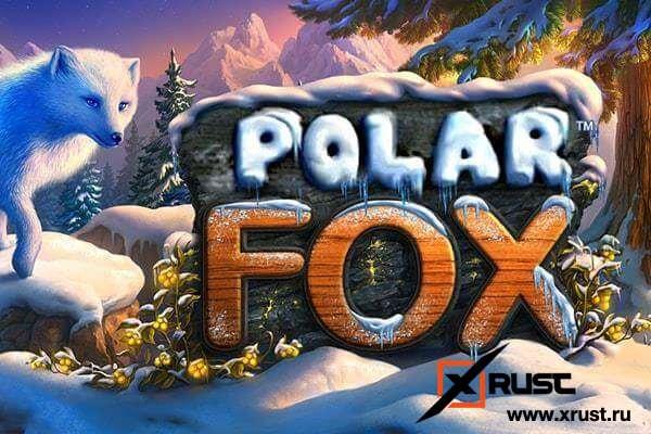 Slots Champion и игровой автомат Polar Fox