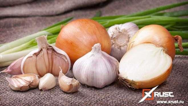 Что полезнее чеснок или лук?
