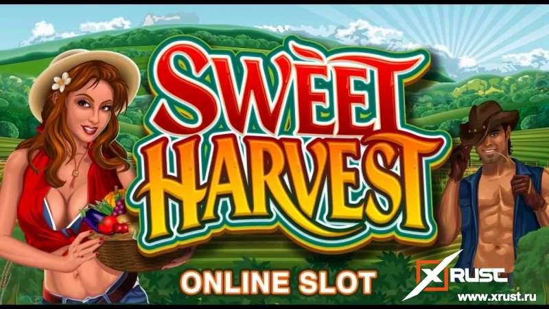 Мобильная версия казино Х или играем в автомат Sweet Harvest на сайте казино-3-топора.com