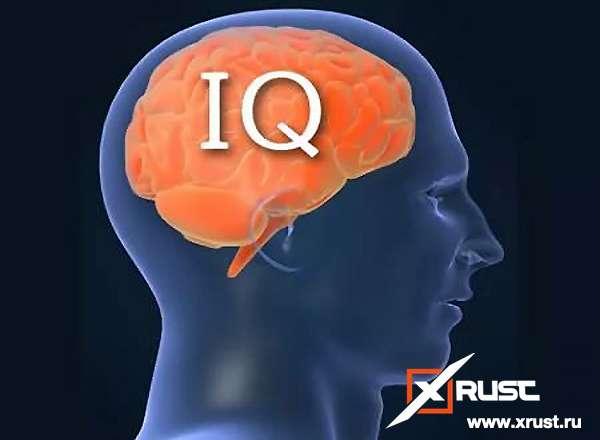 IQ-тесты не отражают уровень интеллекта