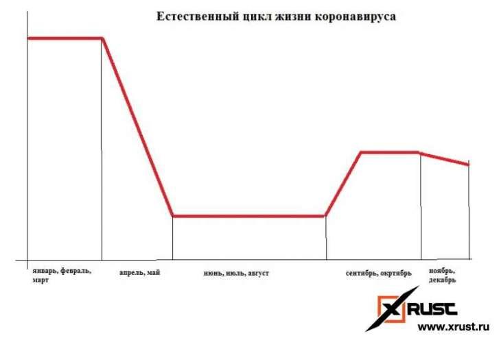 Коронавирус – Попова VS академик Гундаров