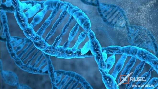 Леворукость: новое исследование ученых